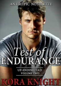 Test of Endurance COVER
